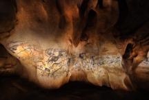 La fresque des lions restituée dans la Caverne du Pont d'Arc