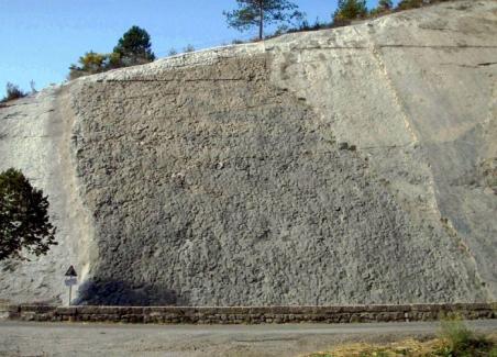 Photo 1. La dalle à ammonites de Digne les Bains présente plus de 1 500 ammonites du Sinémurien, la plupart sont des Coroniceras multicostatum. Certains atteignent 70 cm de diamètre (Photo M.Guiomar, 2009)