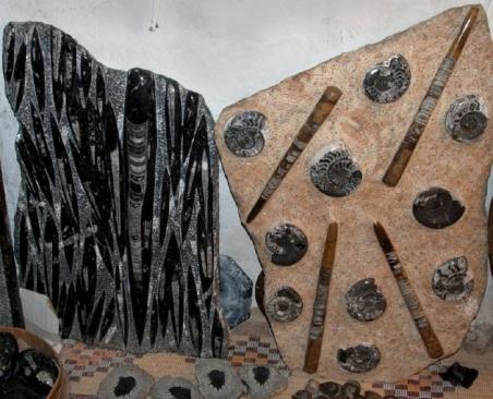 Photo 2 -  Blocs pétris d'Orthoceras du Paléozoïque (Siluro-Dévonien), Sud marocain, région d'Erfoud. Photo P. De Wever