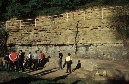 Photo 1. Aménagement d'une des deux carrières où a été défini le stratotype du Toarcien, près de Thouars (Deux-Sèvres). Photo P. De Wever. La barrière du chemin d'accès, en haut, sécurise le cheminement. La barre verticale, visible au centre de la photo, fournit une échelle métrique, alors que les moulages d'ammonites et les petites étiquettes jaunes associées localisent les indicateurs paléontologiques.