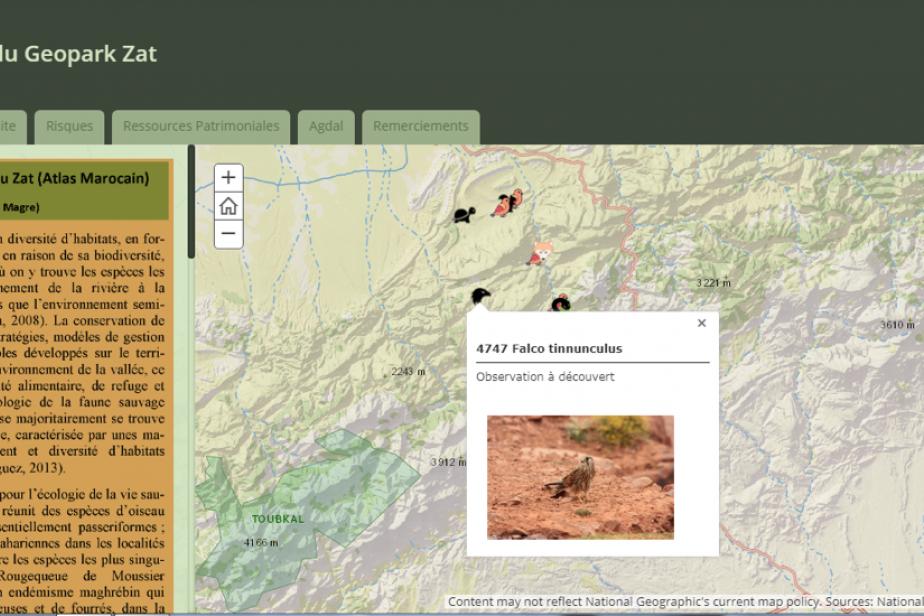 Musée virtuel: la faune de la vallée du Zat