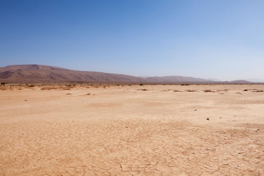 Dans le désert © Martin Loyer
