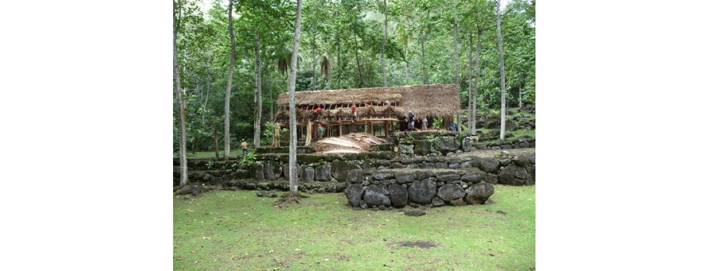 Construction de ha'e (case-maison) sur les paepae (plate-forme lithique) restaurés de Kamuhe ©Pierre Ottino